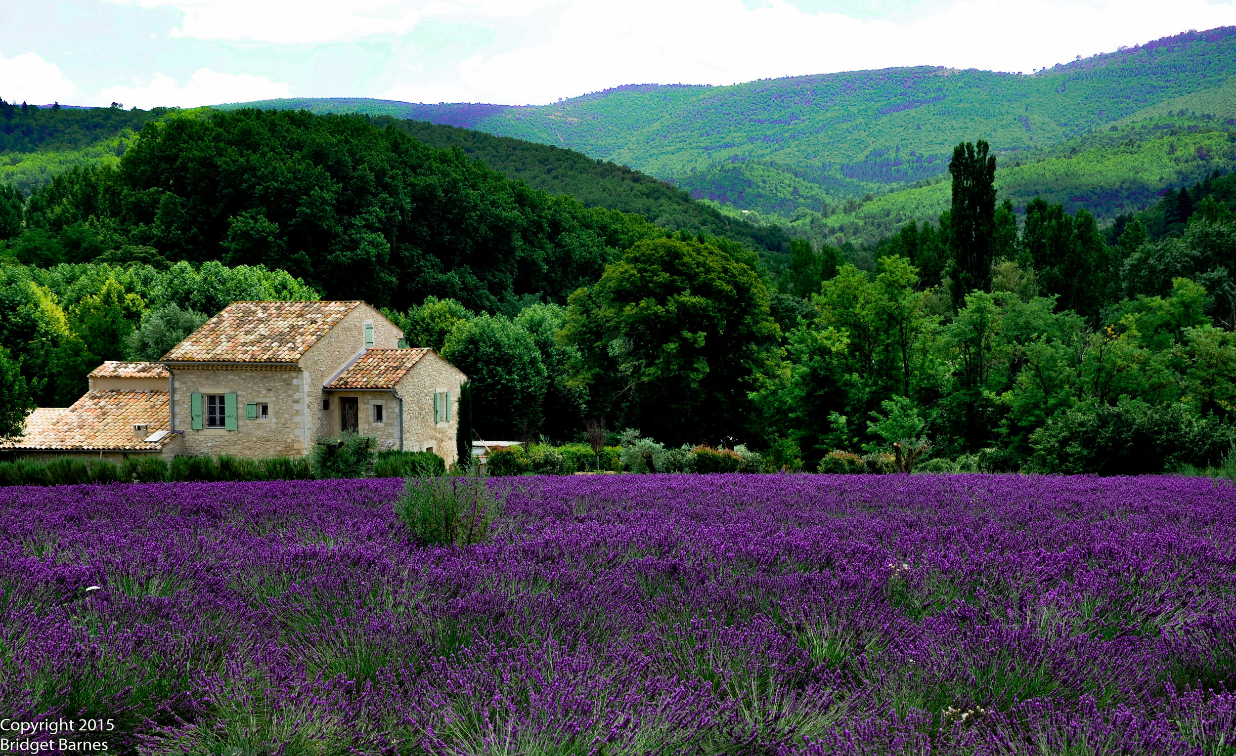 One of the many picturesque scenes we stumbled upon while driving across Provence.