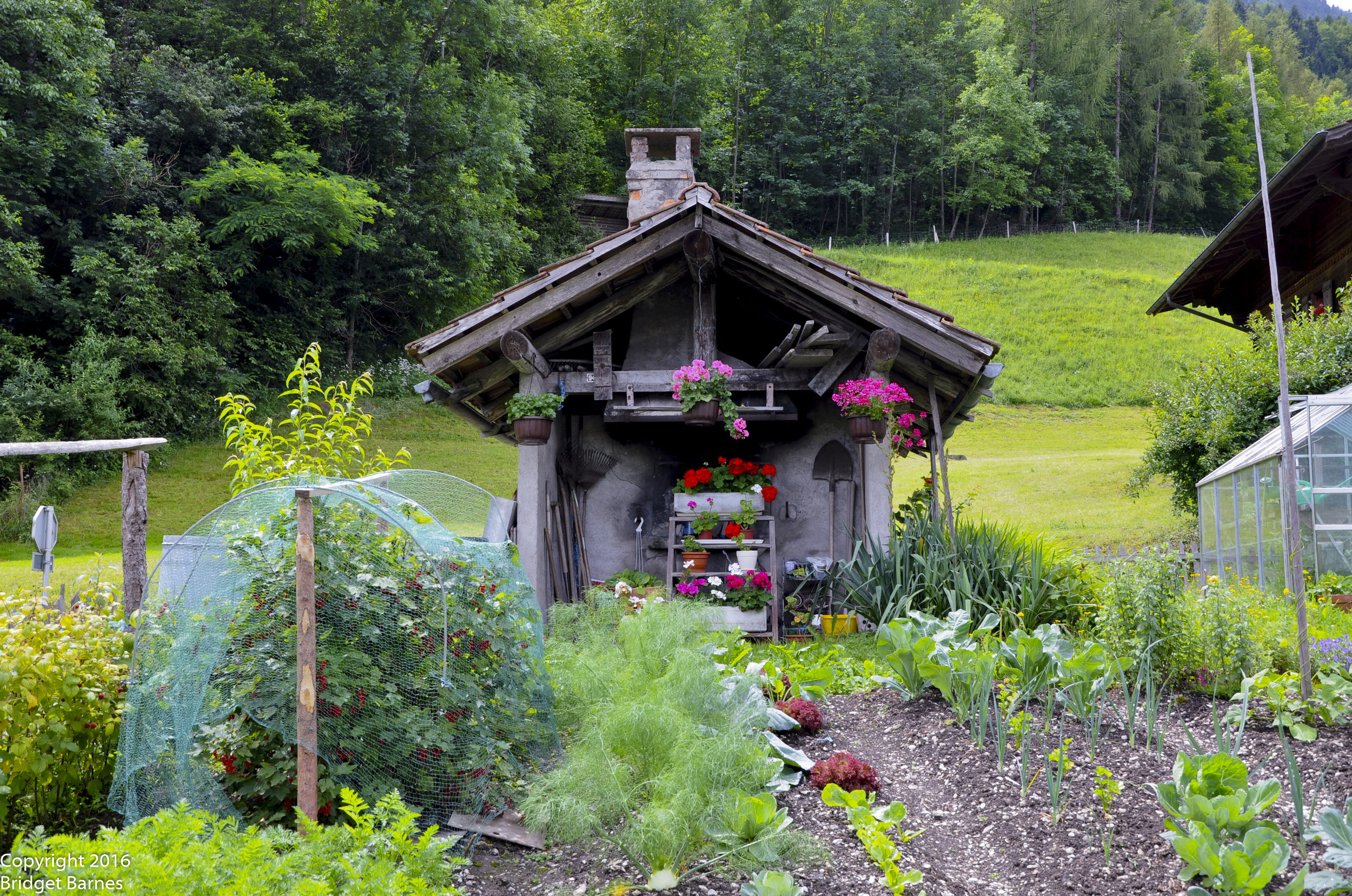 Garden shed in Iseltwald