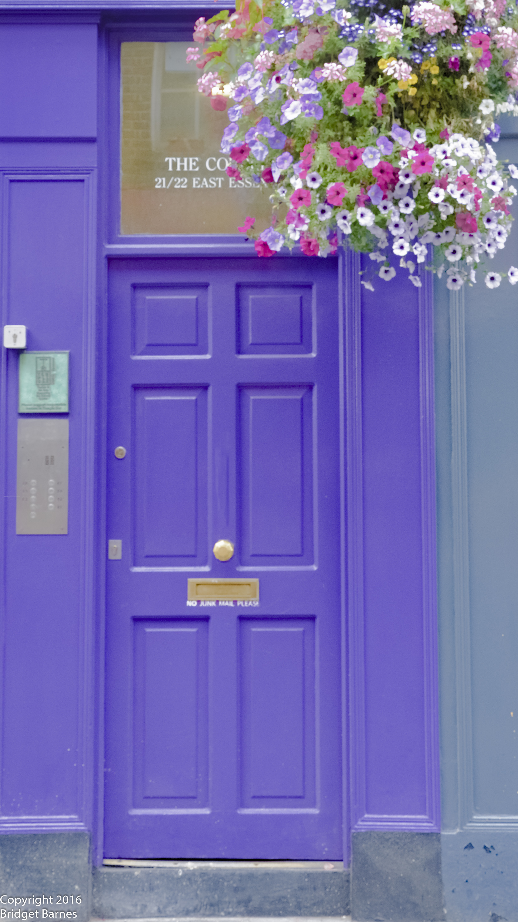 One of the many colorful doors that you will find in Dublin