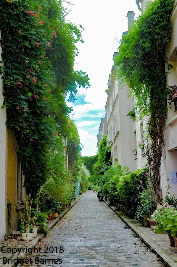 Paris's Sweet Secret Street