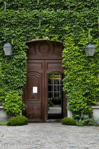 Carefully trained vines create an emerald oasis in the Marais.