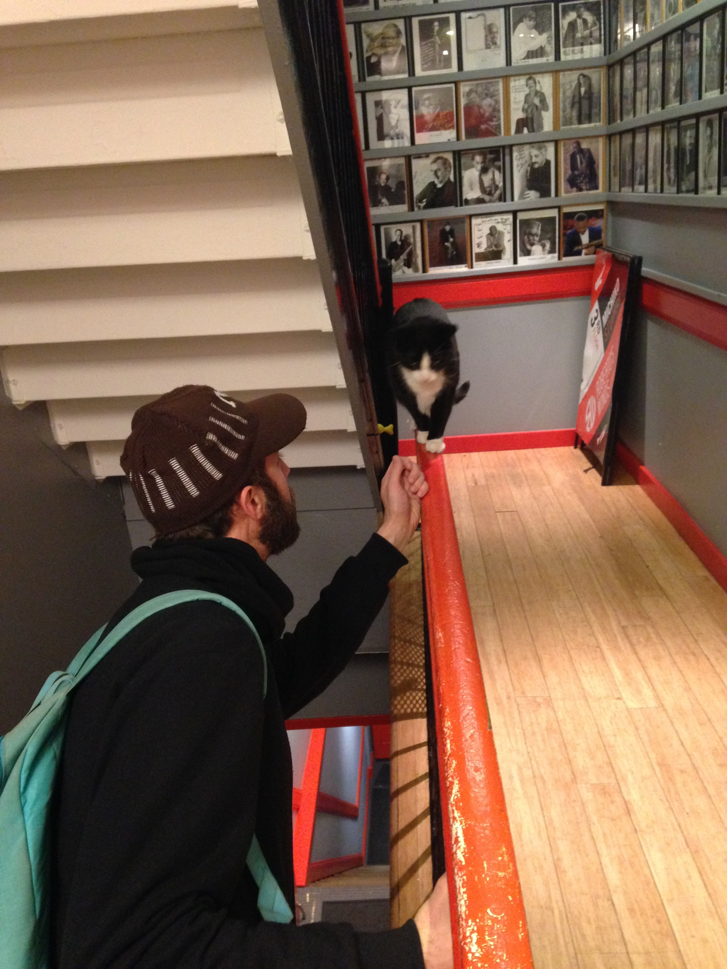 Special shout-out to Owen, who religiously reads our blog! Here he is trying to knock the Michiko Studios' cat off its balance beam.