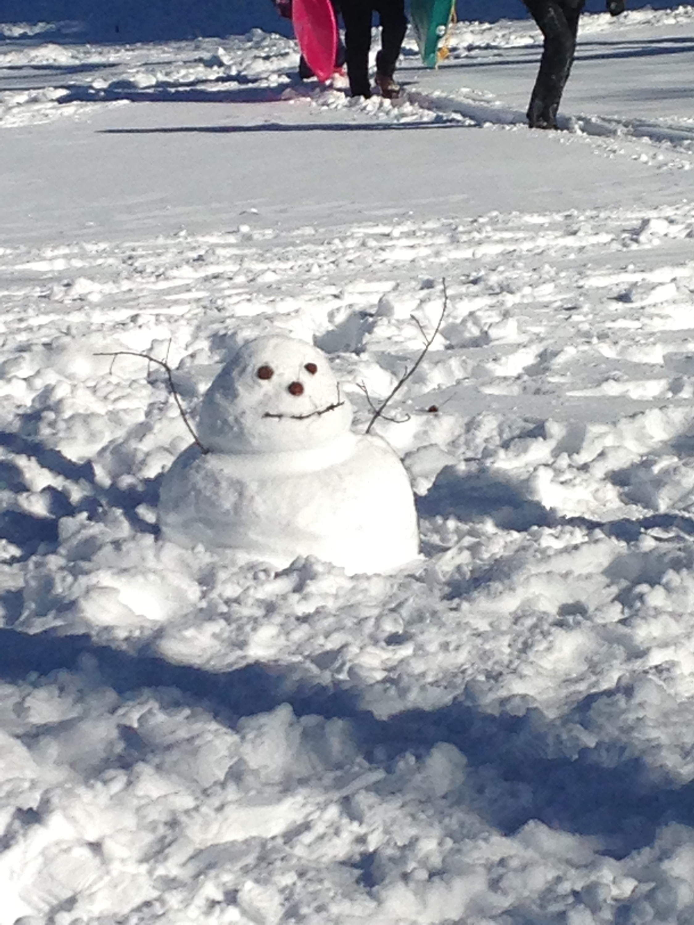 Funny short snowman I found in Inwood Hill Park the day after the blizzard.