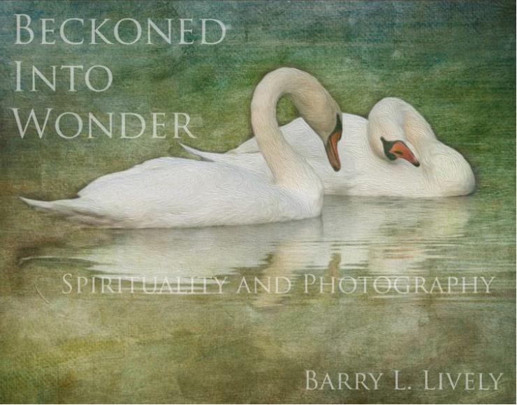 Beckoned Into Wonder cover.jpg
