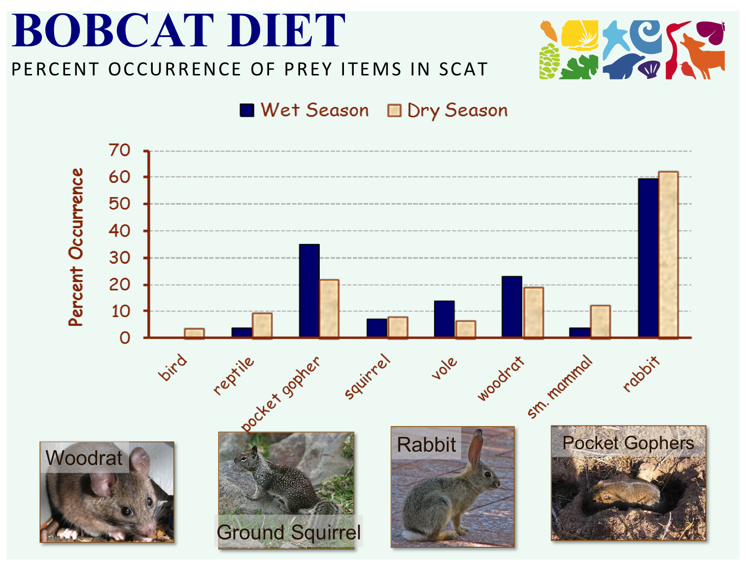 "Credit: National Park Service (Santa Monica Mountains National Recreation Data) collected for study published in 2001 (see ""Publications"" page). Wet season: November 1-April 30; Dry Season: May 1- October 31."