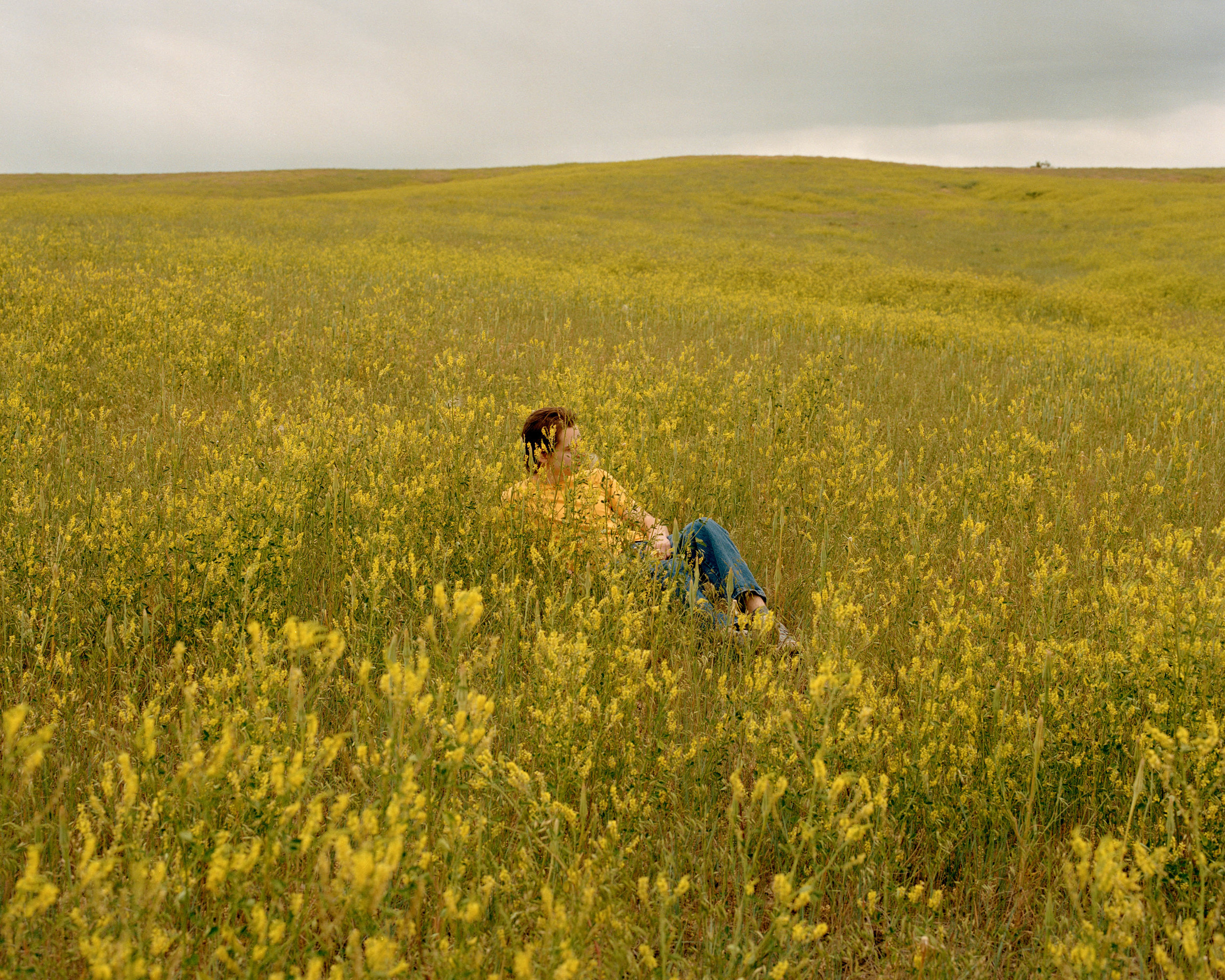 """Northern Plains; for Caroline's project, titled  """"Big Sky"""""""
