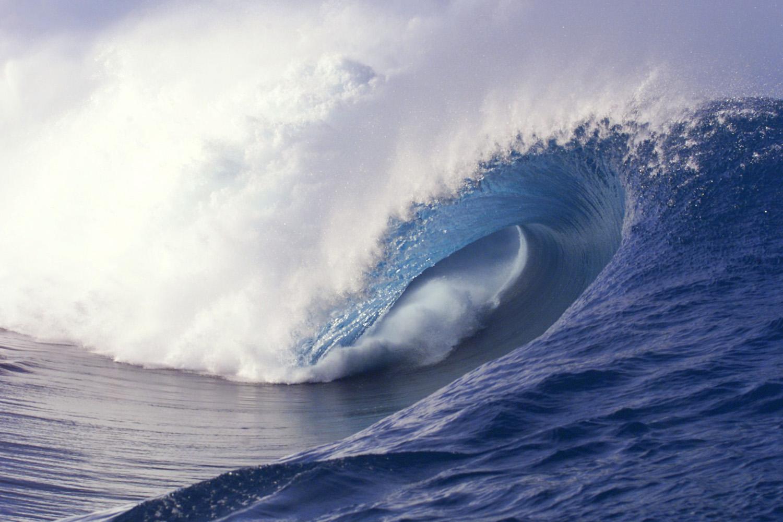 Surfers-Bible.jpg