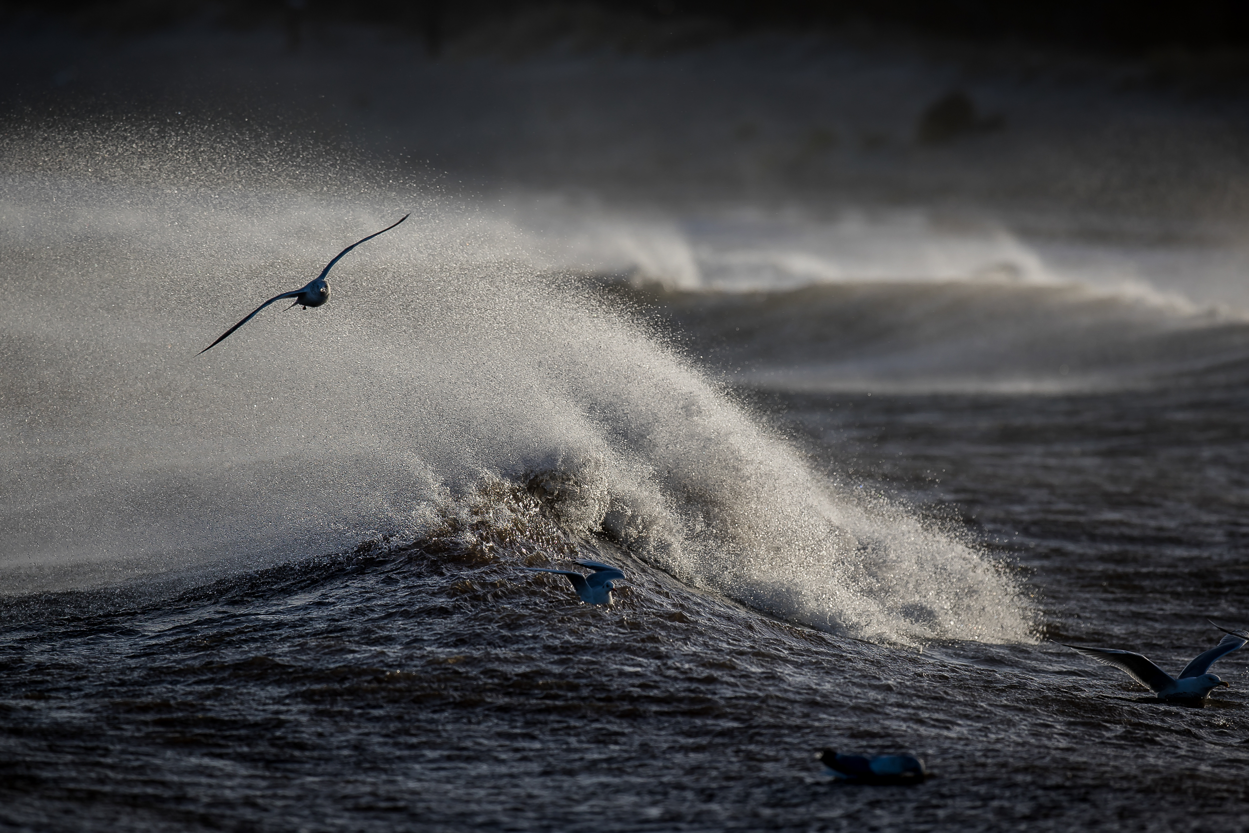 Christian-Surfers-Denmark-3.jpg