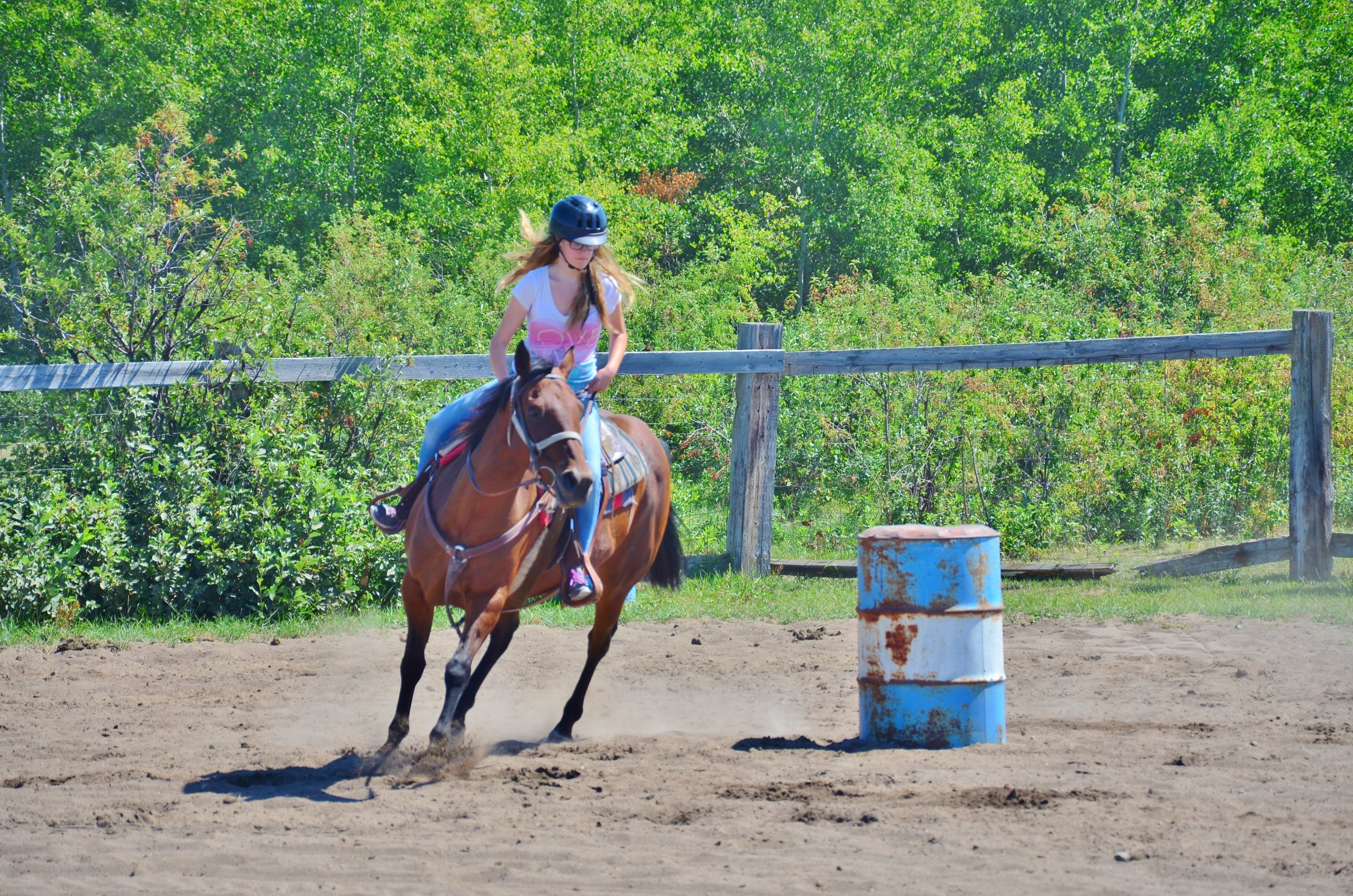 Intermediate Riding Camp 2015 966.JPG