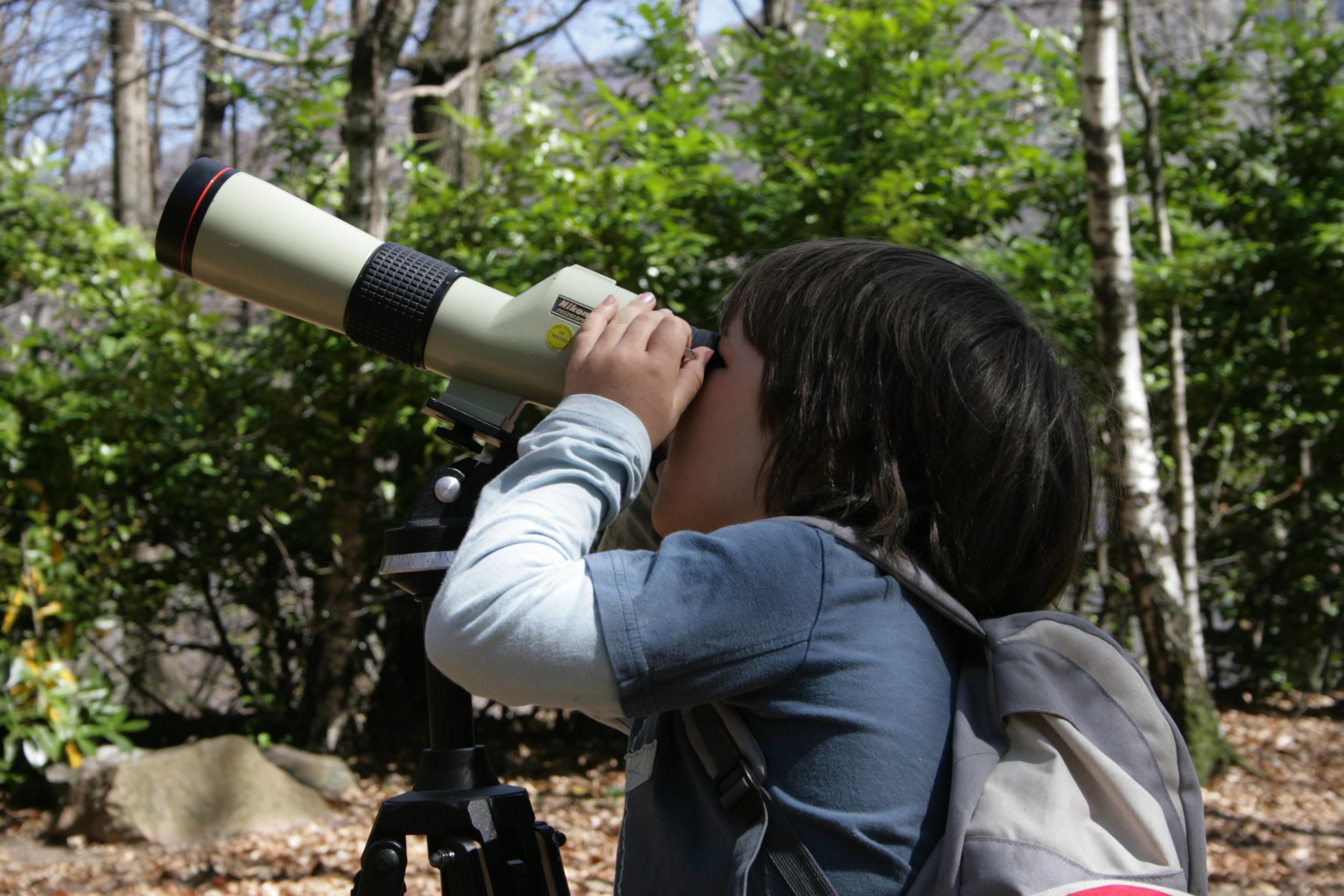 memomara-corso-monitoraggio-uccelli.jpg