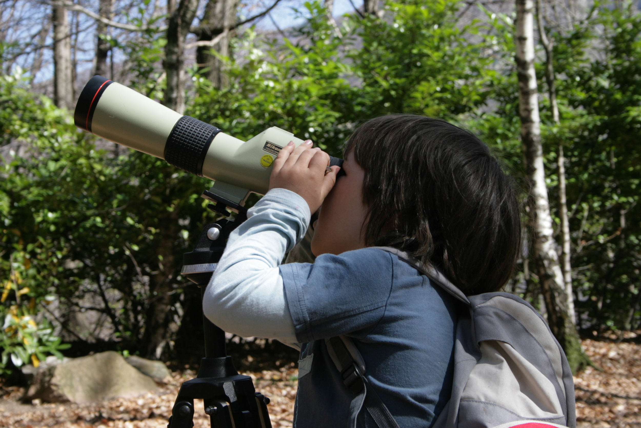 corso-monitoraggio-uccelli-ragazzo