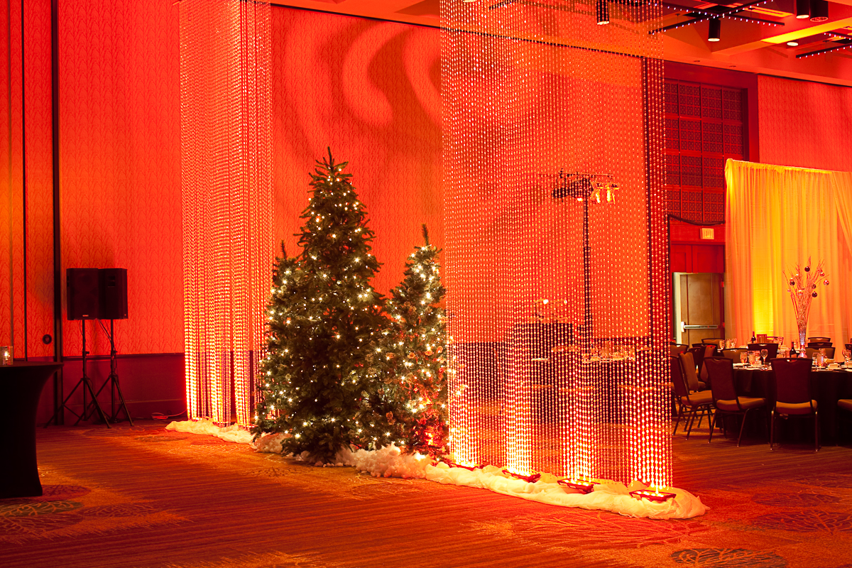 RCA Diagnostics / Mayfair Diagnostics Holiday Event 2013