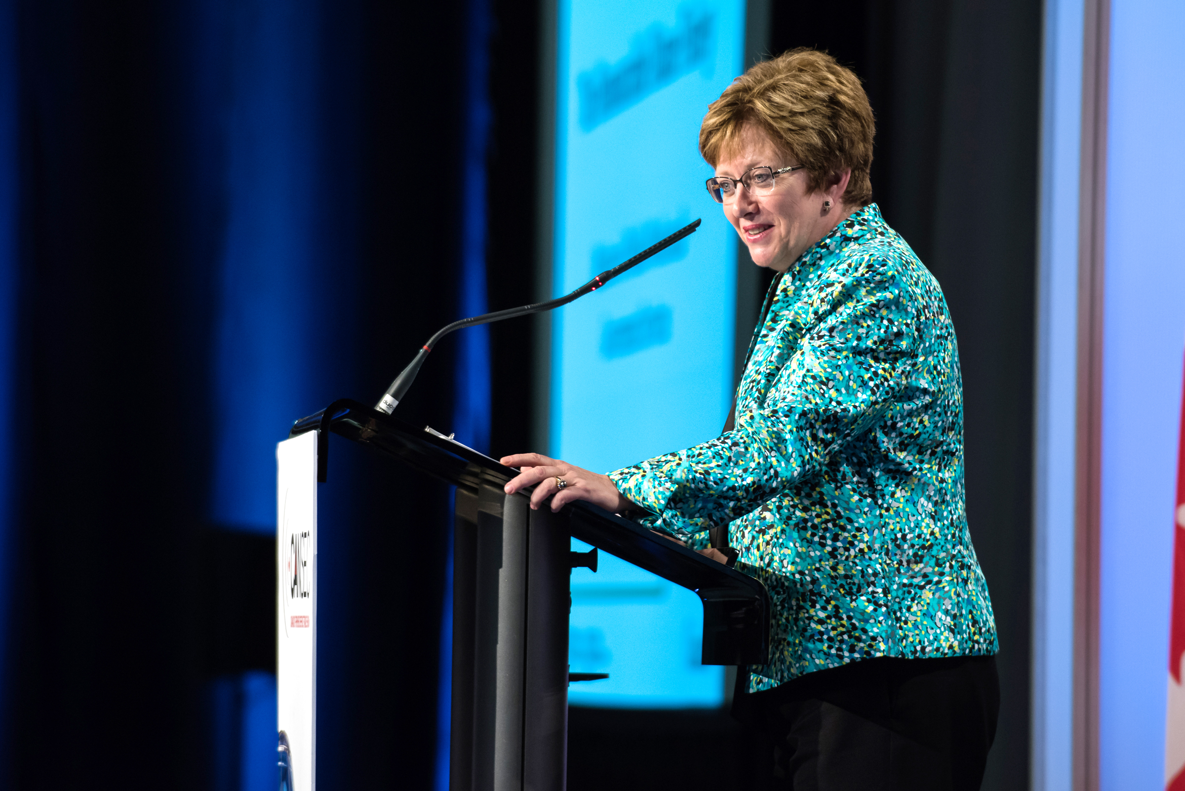 Minister of Public Works and Government Services Diane Finley outlined at the CANSEC 2015 trade show in Ottawa on May 28 the Conservative government's plan to apply the Defence Procurement Strategy to all new procurements. (Richard Lawrence)