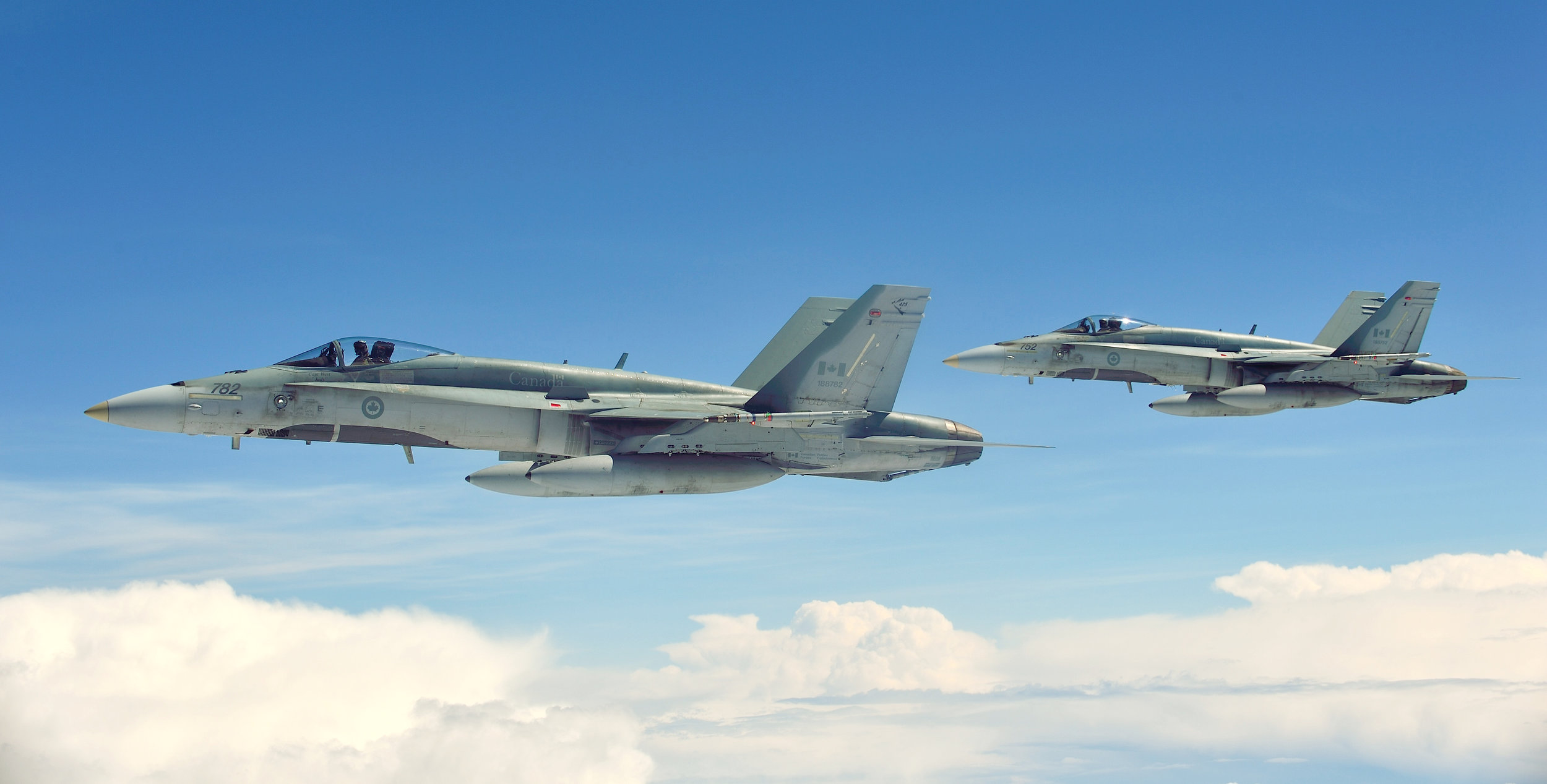 A comparative study of two air forces: Are Sweden and Canada similar