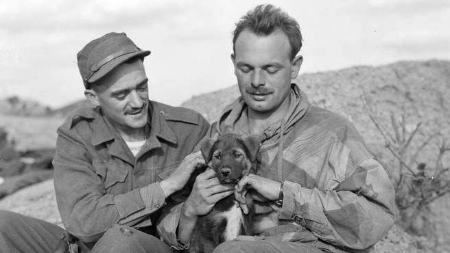 """At the Battle of the Song-gok Spur, November 2–3, 1951, Lt. Ed Mastronardi (right) commanded 2 Platoon, Able Company, 2nd Battalion The Royal Canadian Regiment while Pte. """"Red"""" Butler (left) was one of Ed's Bren-gunners. The pooch """"Sport"""" was the platoon's mascot. In 2014, a documentary film called """"28 Heroes"""" brought to life the harrowing story of how Ed's platoon — """"The Flying Deuce"""" — successfully defended the isolated outpost against a series of attacks by a full battalion of Chinese."""
