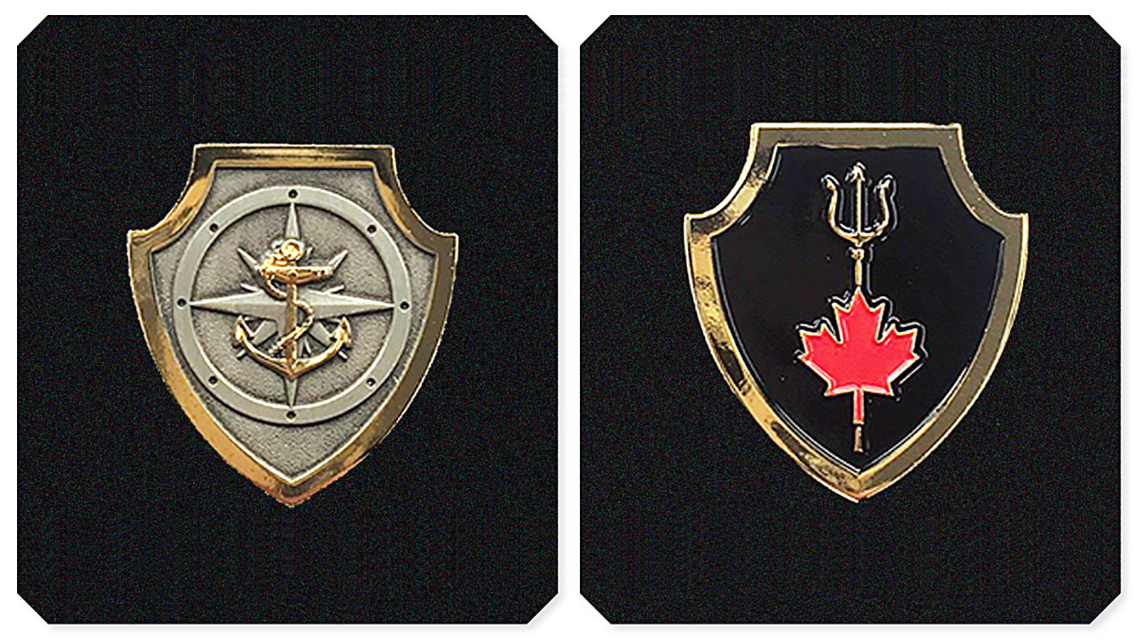 From left: The Naval Boarding Party Basic Qualification badge and the Naval Tactical Operations Group Qualification badge.
