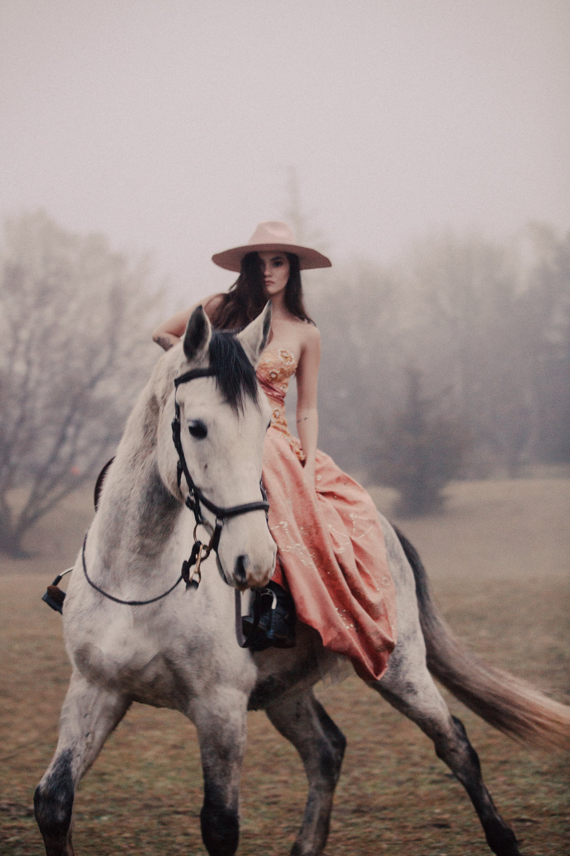 HorseAccesories.jpg