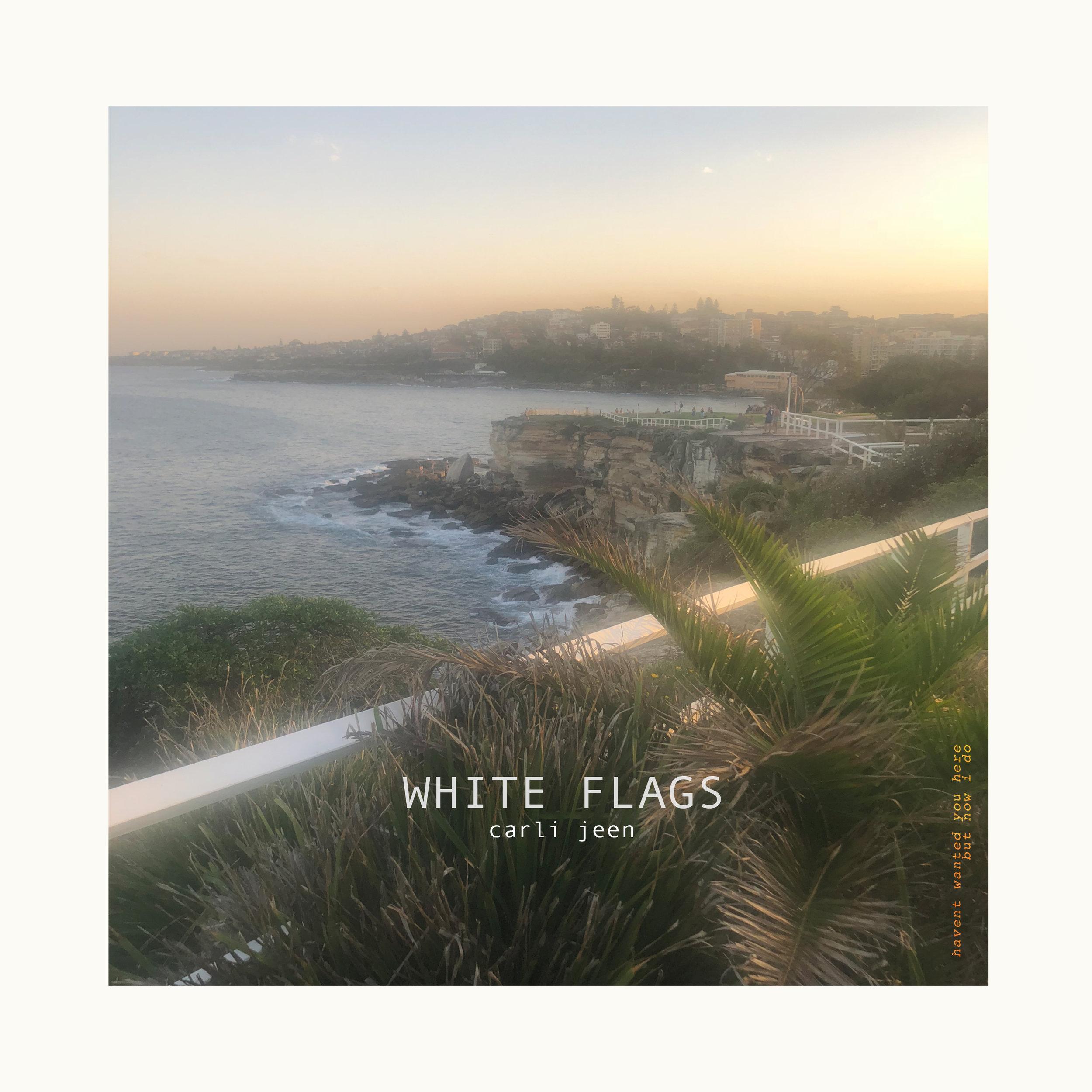 WHITEFLAGS_COVER.jpg