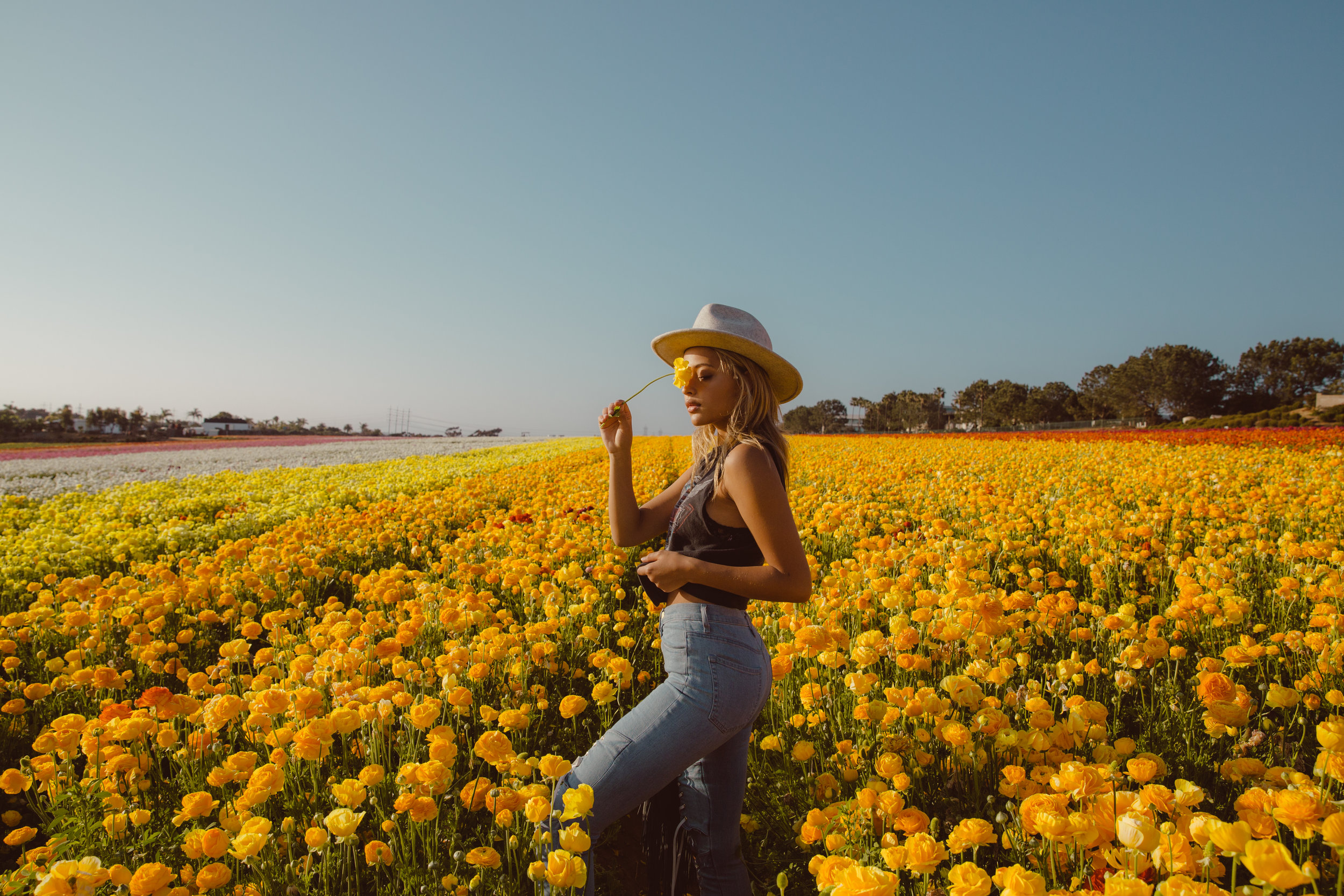 FLOWER_FIELDS-141.jpg