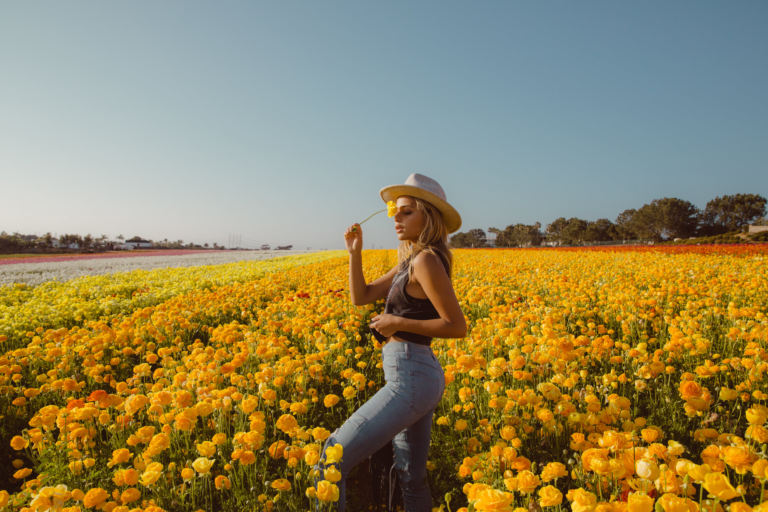 FLOWER_FIELDS-142.jpg