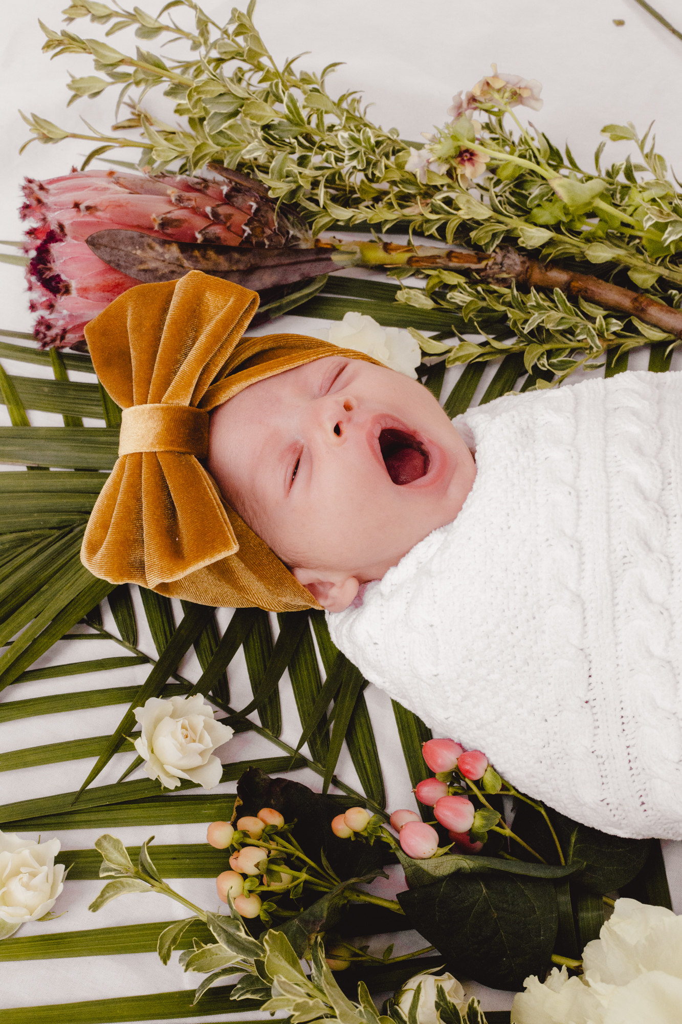 BabyRusso_CarliJeen-10.jpg