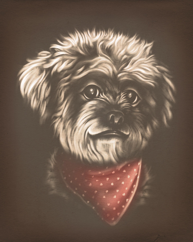 vintage pet portrait - Betty