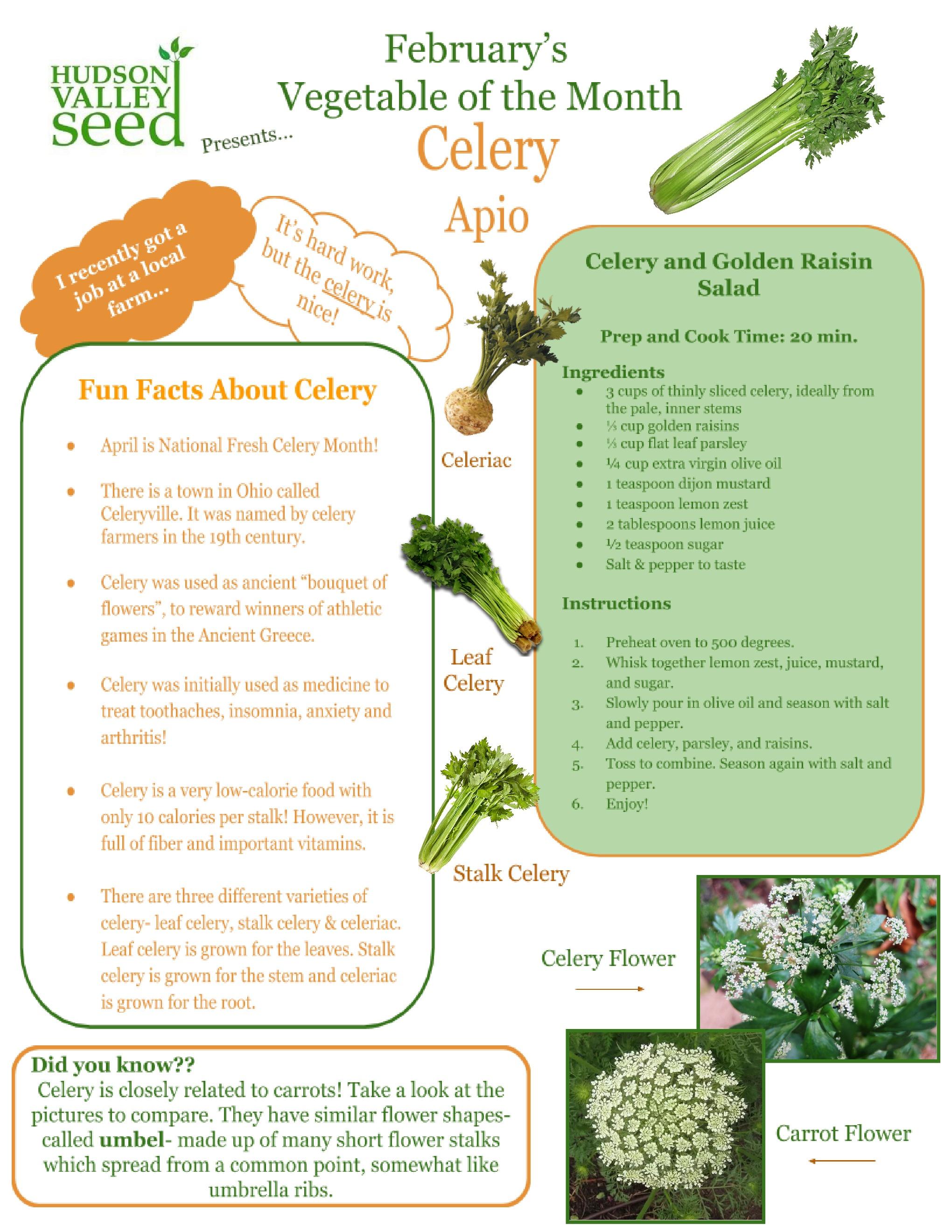 celery fun fact.jpg