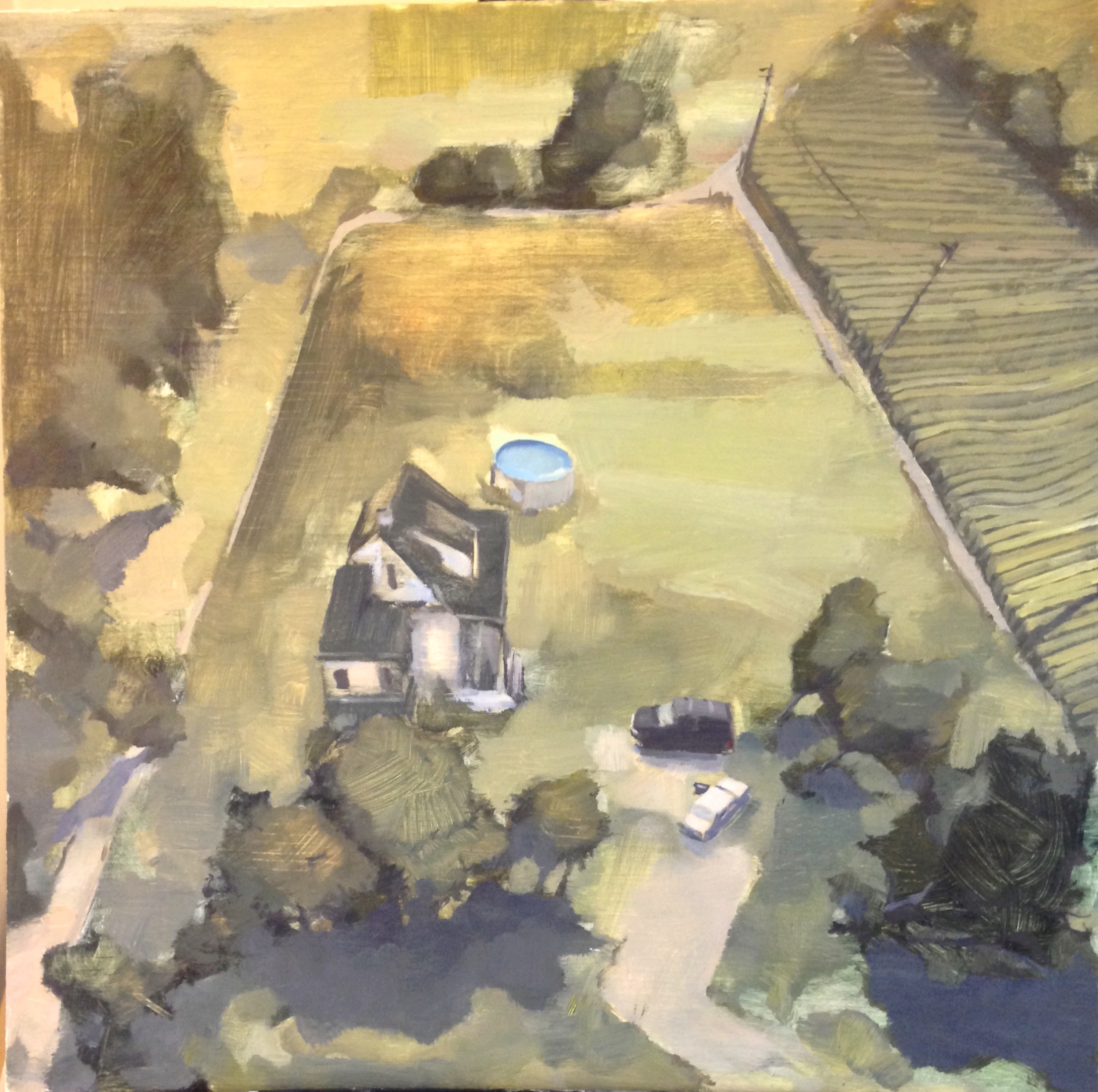 A Sudden Recollection of Time Spent in Morenci, MI. , Oil on Panel, 2'x2', 2015
