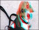 3D Pets - Dogs
