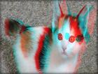 3D Pets - Cats