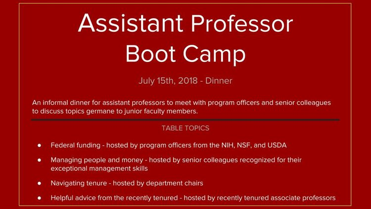 Assistant+Professor+Boot+Camp.jpg
