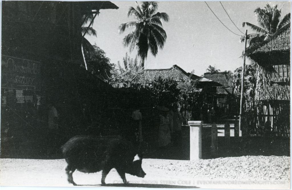 Pig in Filipino Village with Chesterfield Ad.jpg