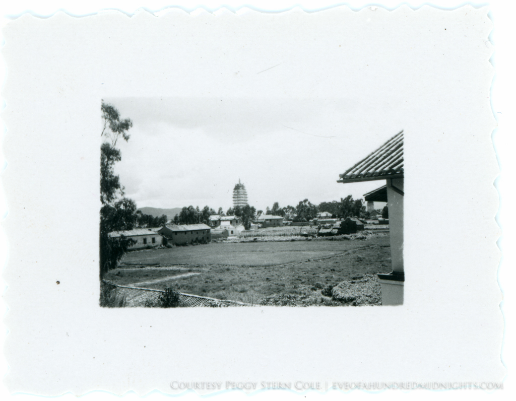Large Pagodas or Towers Beyond Field from Tiny Deckle Print [maybe Kunming].jpg