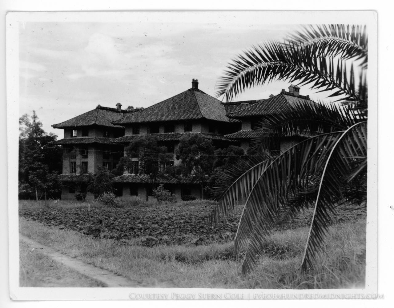 Lingnan Campsu Building Beyond Palm Tree.jpg