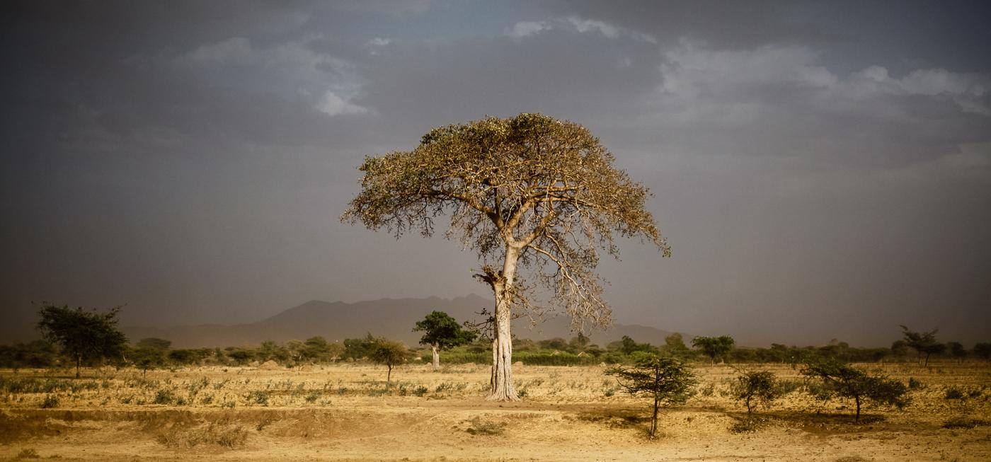 Ethiopia 2012.