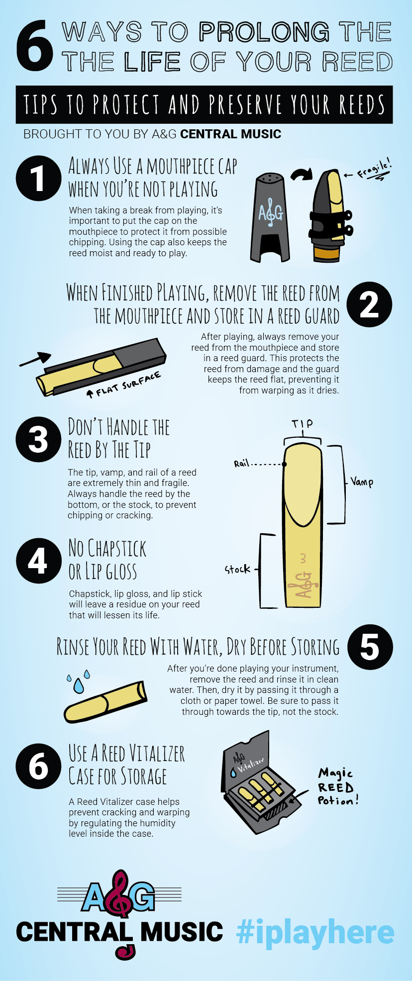 Reed-Infographic