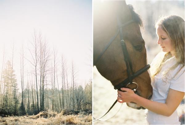 horse-engagement-ideas.jpg