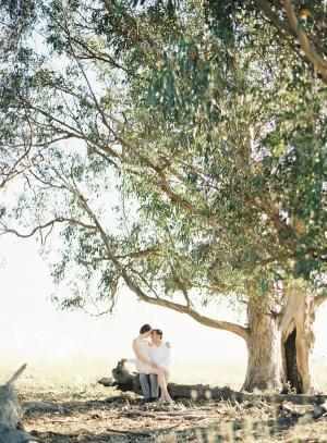 Big-Tree-Engagement-Shoot-300x407.jpg