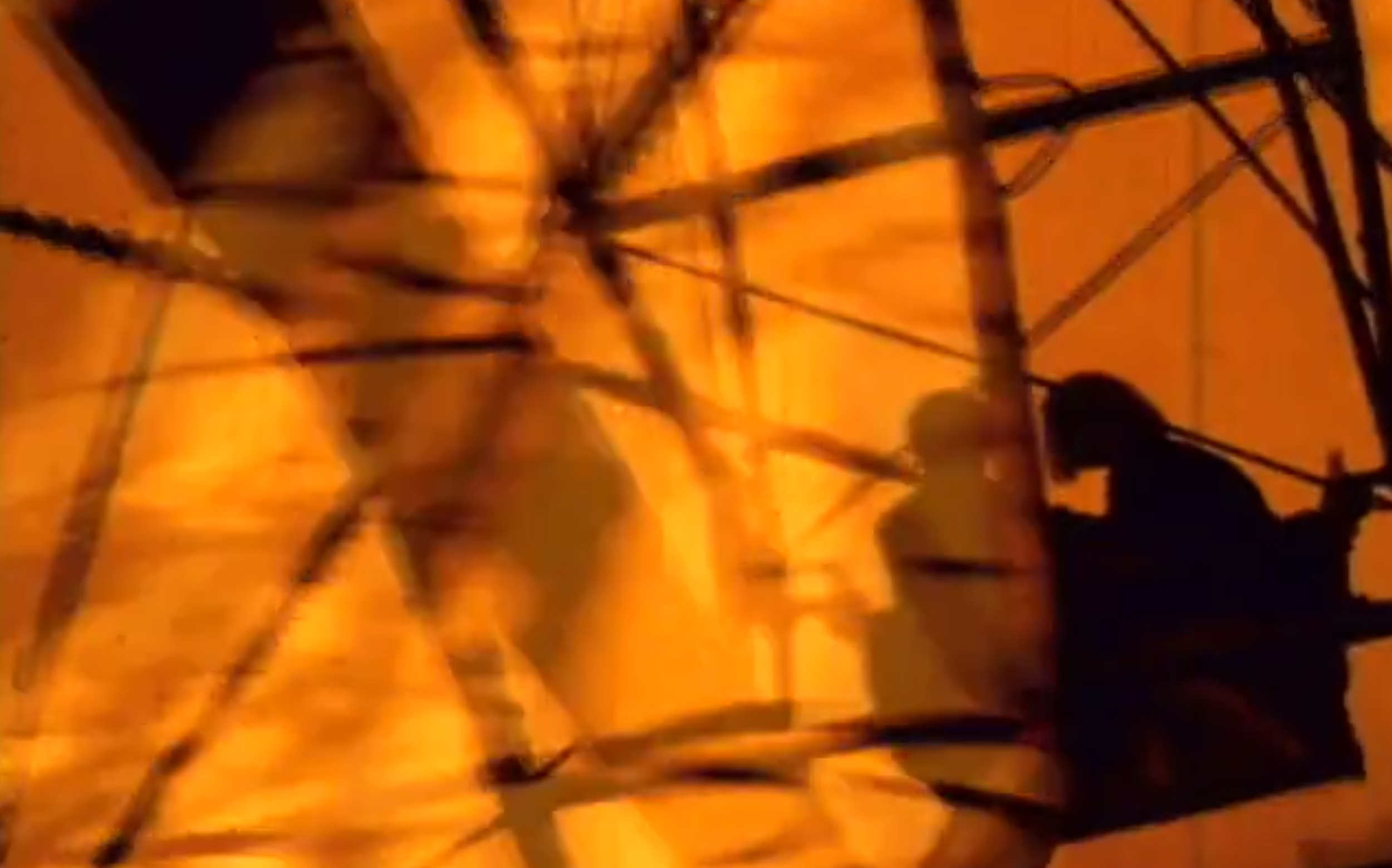 FERRIS ORANGE.jpg