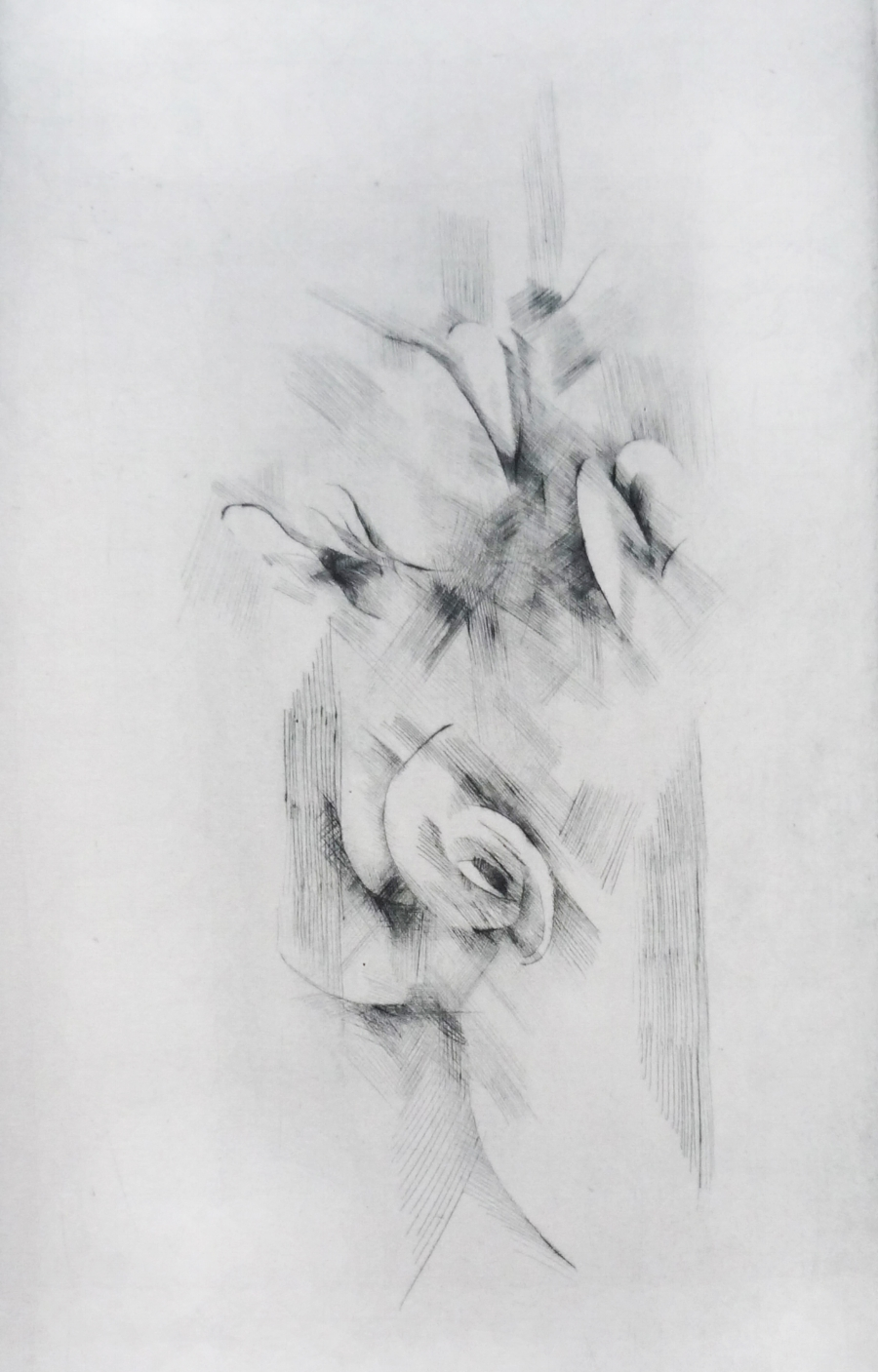 FLOWERS etching copy.jpg
