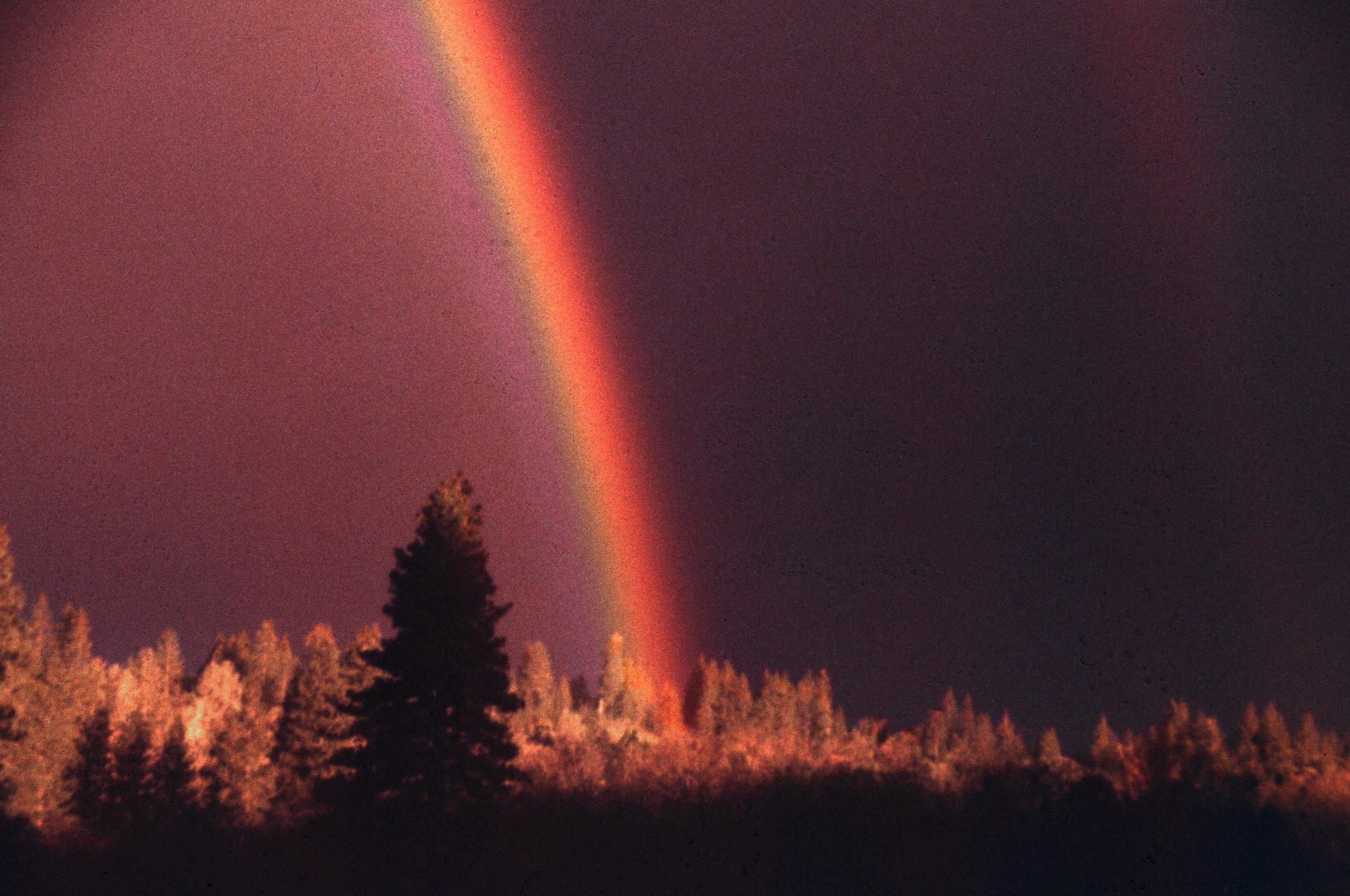 FEN Rainbow.jpg