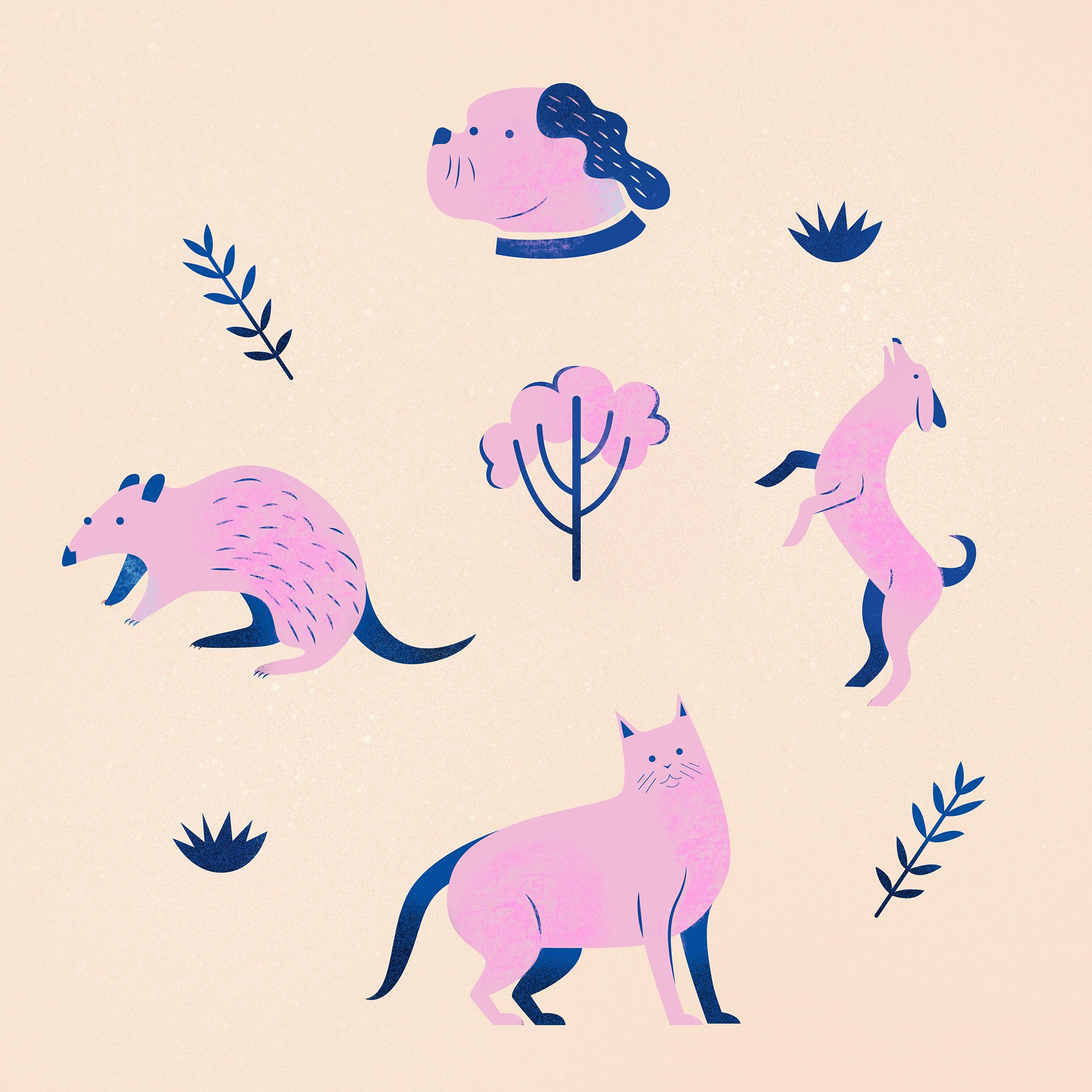 Animal-pattern-SofiaVarano.jpg