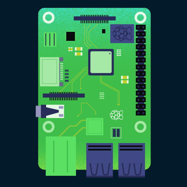 raspberry-pi-illustration-sofia-vatano.jpg