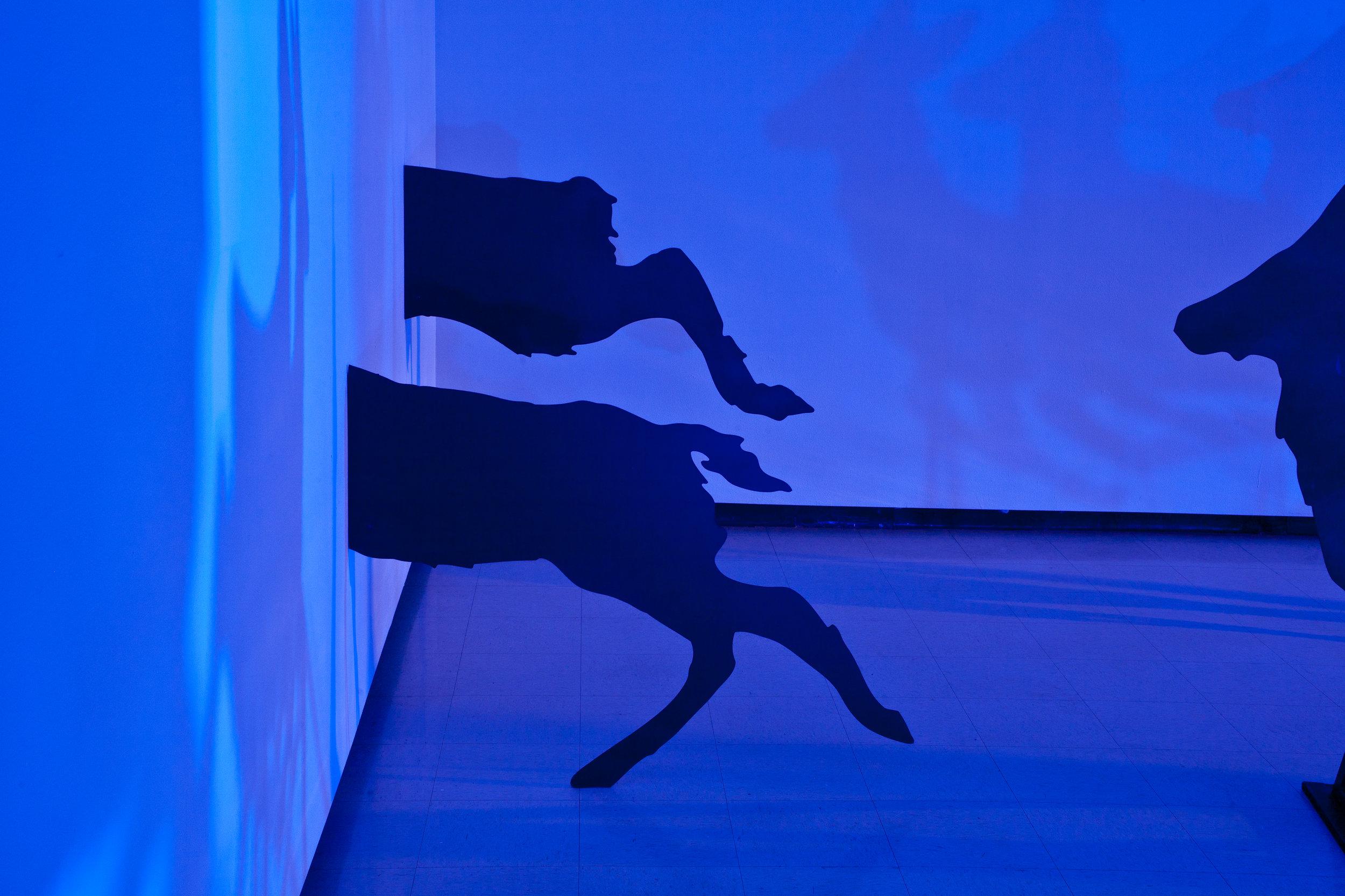 Encounter , Installation view:Harry Wood Gallery, Arizona State University, Tempe, Arizona, 2011  Photo Credit: Joshua White