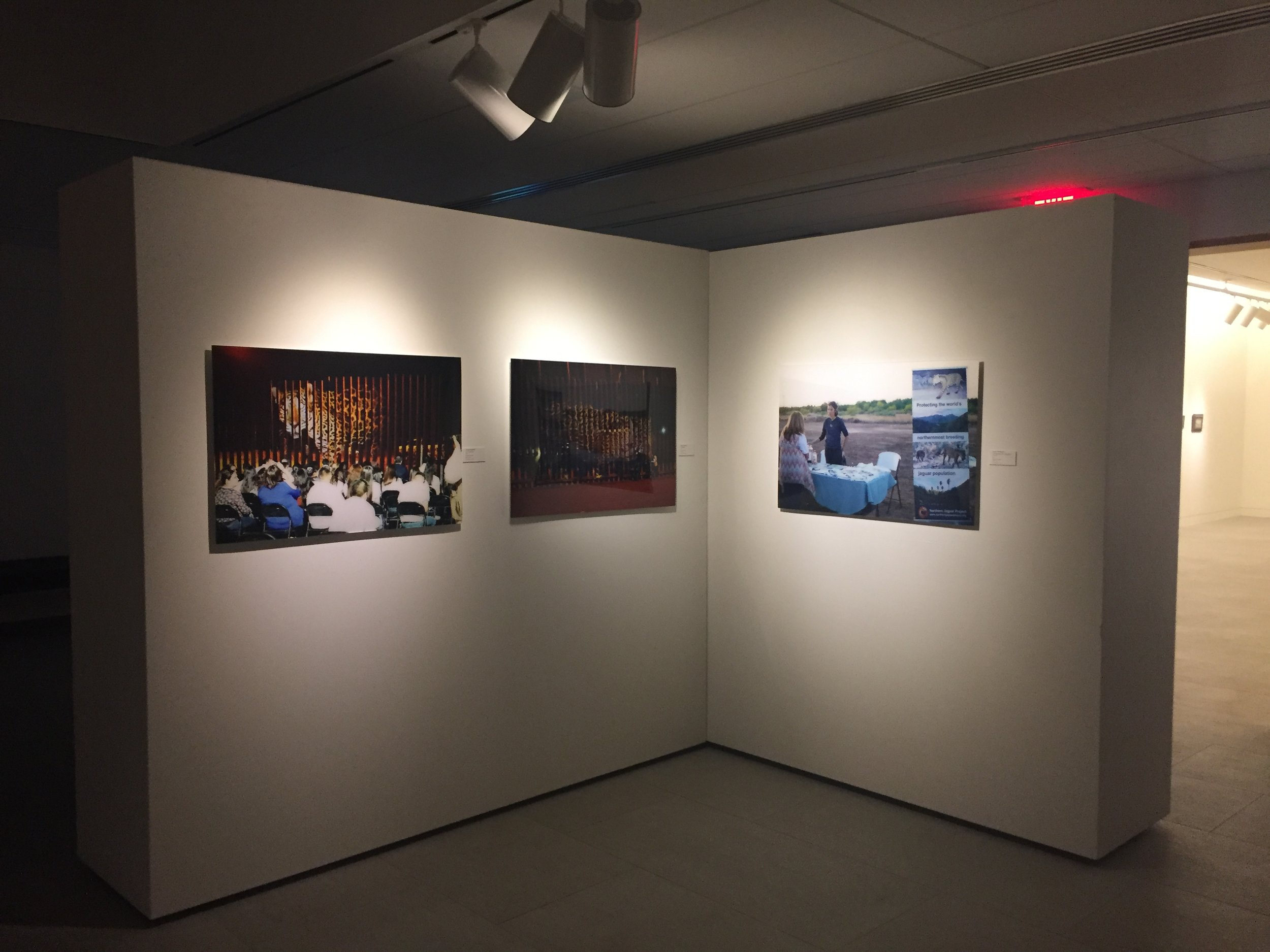Confrontation , Installation view:  Image triptych from  Un-Fragmenting/Des-Fragmentando , Mary Blanton Kennedy Gallery, Museum of the Southwest, Midland, Texas, 2017