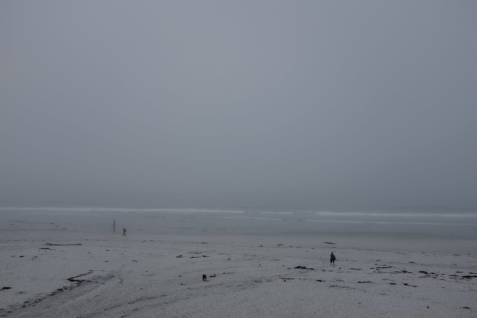 California fog2.jpg