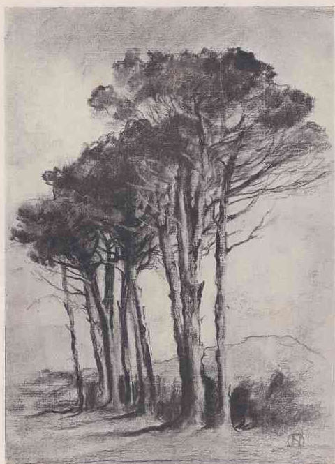 Study of Trees, illustrated in Roworth's essay on SA landscape art, 1917