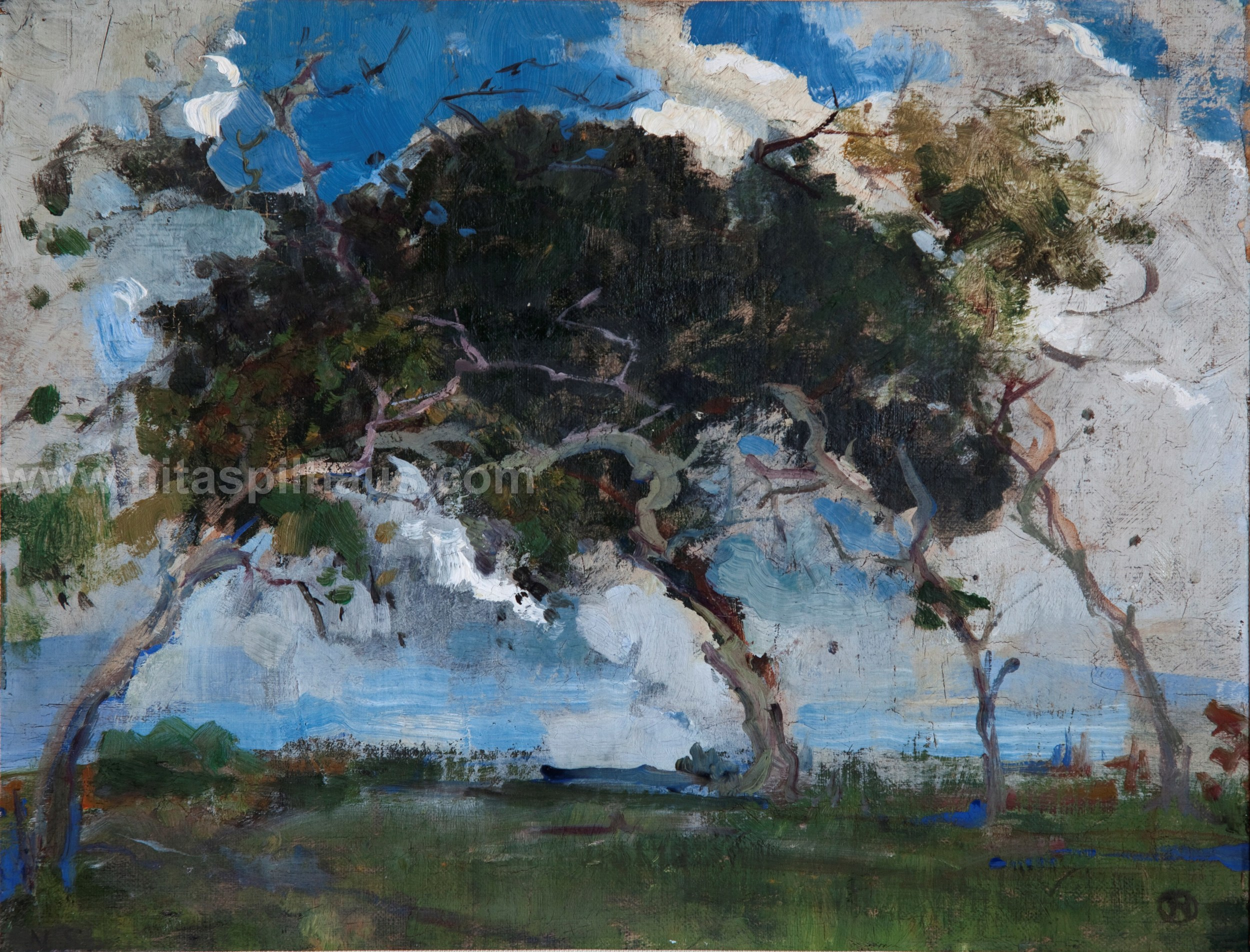 Trees blowing in the wind, Oil 28.7 x 36 Collector 2
