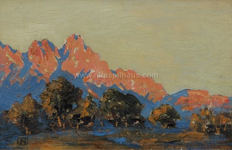 Stellenbosch Mountains Oil on board 18.5 x 28.5 Collector 5