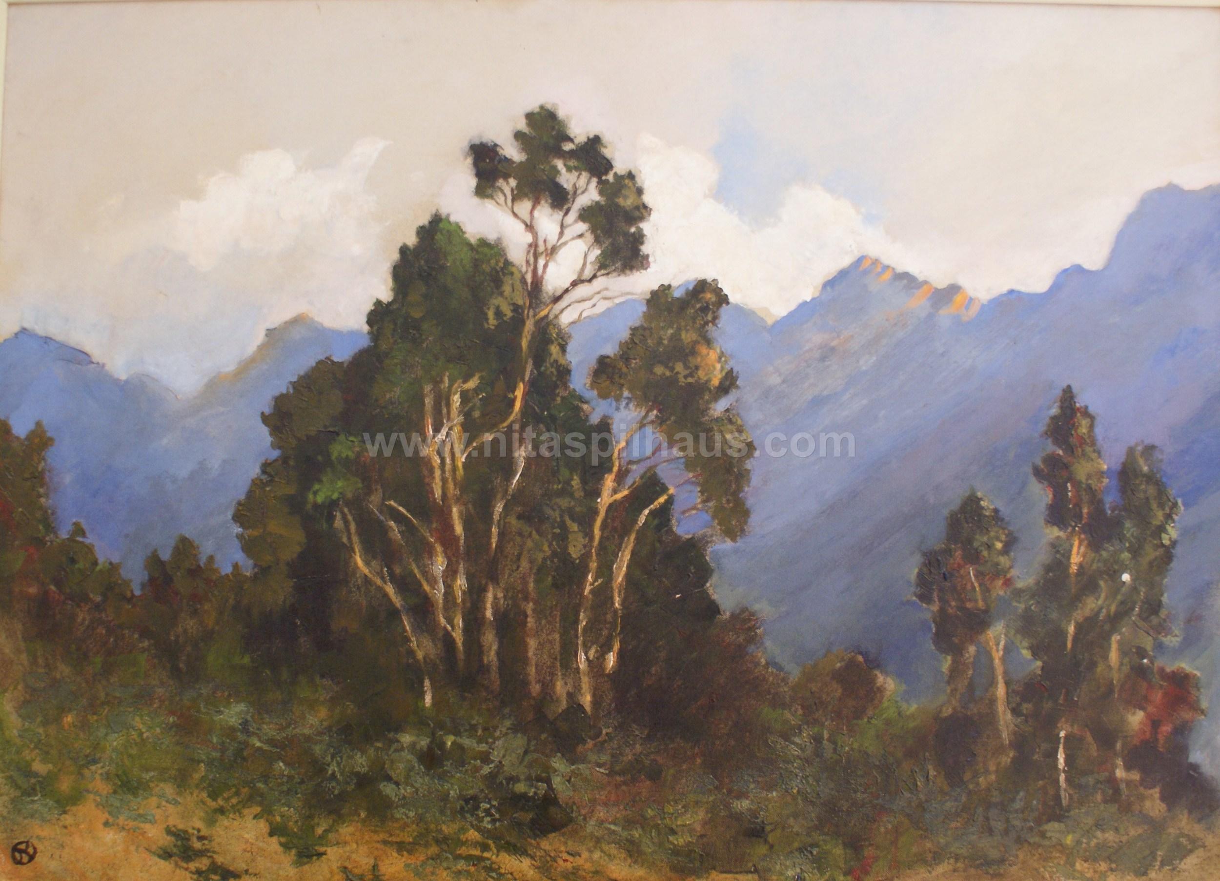 Jonkershoek Mountains Oil on Canvas 60 x 80 Collector 7